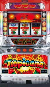 トロピカーナ‐30