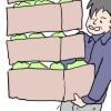 野菜販売 WEBパチスロ漫画